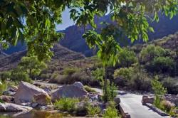 Sabino Canyon Biking – Tucson, AZ