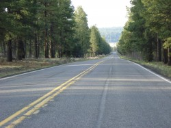 Snow Bowl Road Bike Ride – Flagstaff, Arizona