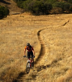 Kentucky Camp Mountain Bike Trail – Southern, Arizona