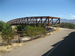"""The Loop"" Bike Ride Along the Canada del Oro Wash"